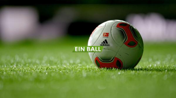 VfL_Wolfsburg_feature_01